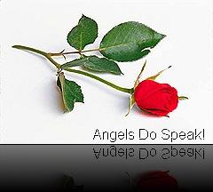 angel evil Red rose
